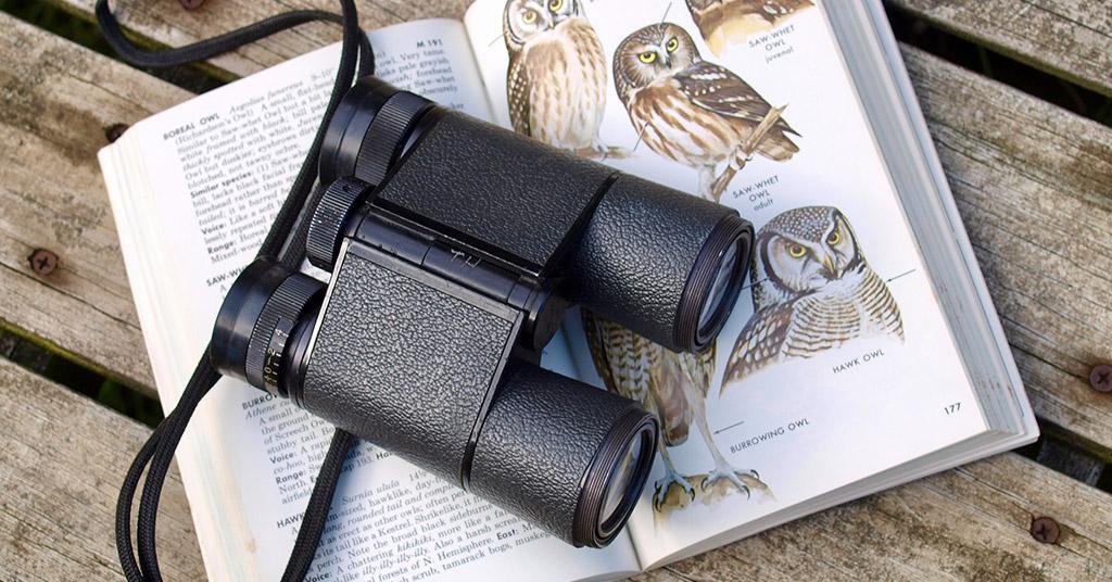 What Do Binocular Names Mean