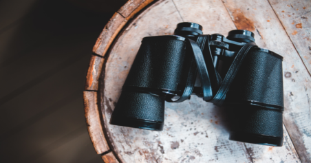Top 5 Best 8x42 Binoculars