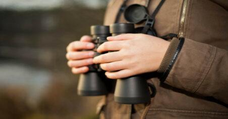 Viking Peregrine ED Binoculars Review