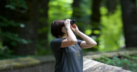 How To Choose The Best Binoculars For Birdwatching